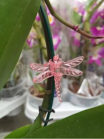 Клипсове за Орхидеи - розови
