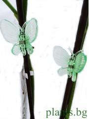 Клипсове за Орхидеи - зелени