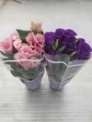 Еустома - Японска Роза комплект 2бр. PR4796