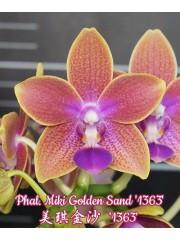 Орхидея Фаленопсис (Phal. Miki Golden Sand '1363')