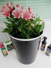 Кашпа за цветя - Черна - S397